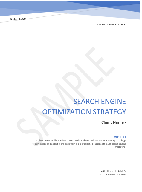 SEO Action Plan Example
